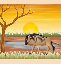 Bison animal cartoon in dry land vector