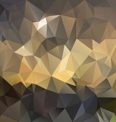 Brown polygonal triangular pattern background vector