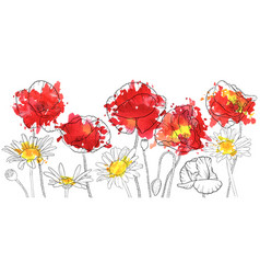 drawing poppies and daisy flowers vector image