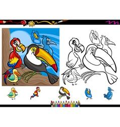 exotic birds cartoon coloring page set vector image