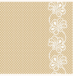 flower lace border on beige background vector image