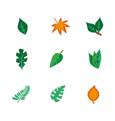 Objects leaf set vector
