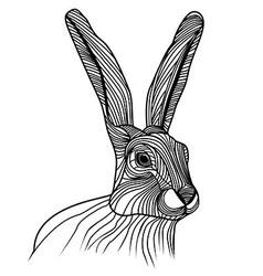 Rabbit or hare head animal vector