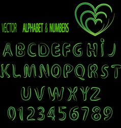 vector herbal alphabet and numbers vector image