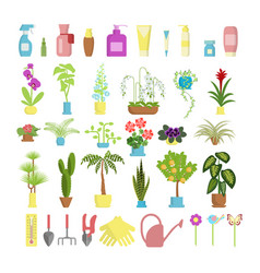 window gardening infographic elements vector image