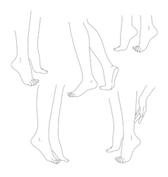Womans legs female bare feet set vector
