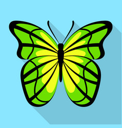yellow green butterfly icon flat style vector image