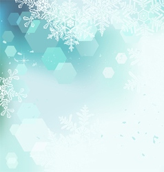 Winter background snowflakes vector image vector image