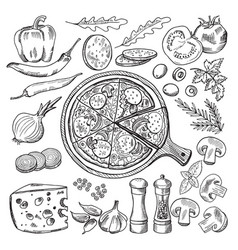 Classical italian cuisine pizza vector