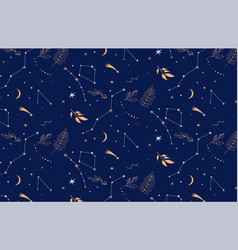 Constellations seamless pattern night background vector