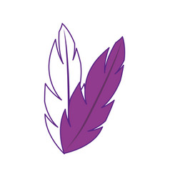 Feathers icon image vector