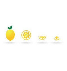 lemon fruit slice abstract icon set vector image