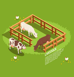 Livestock isometric composition vector