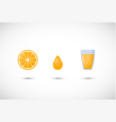 orange juice flat icon set vector image