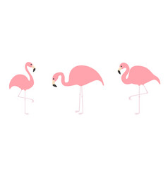 pink flamingo icon set line three exotic tropical vector image