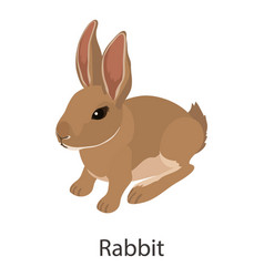 Rabbit icon isometric style vector
