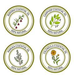 Set essential oil labels vector