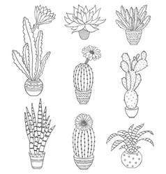 set of hand drawn houseplant vector image