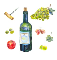 Watercolor wine collection vector