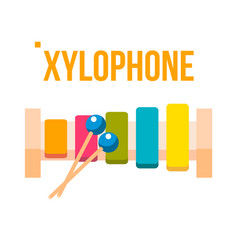 xylophone musical child instrument vector image