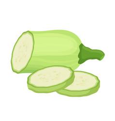 fresh zucchini squash cartoon flat style vector image vector image