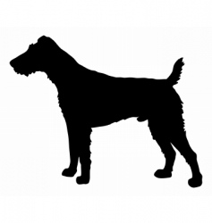 fox terrier silhouette vector image vector image