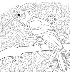 adult coloring bookpage a cute hoopoe on the vector image