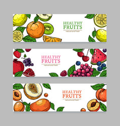 berries and fruits banners cartoon orange mango vector image