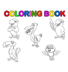 Bird collection coloring book vector image