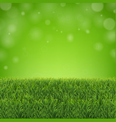 green grass border with sunburst and bokeh vector image
