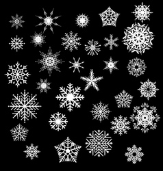 snowfake vector image