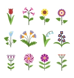 Stylized minimalistic flowers vector
