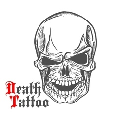 Skull sketch with spooky smile vector image vector image