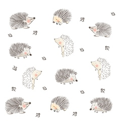Hedgehog Pattern vector image