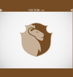 abstract lion shield logo vector image
