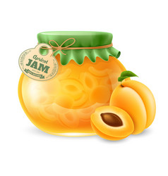 Apricot jam in the glass jar vector