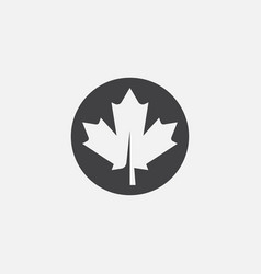 autumn leaf canadian icon maple leaf vector image