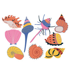 collection of seashells colorful tropical vector image