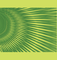 Floral pattern fpalm leaf background tropical vector