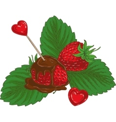 Ripe Red Chocolate Covered Strawberry vector image