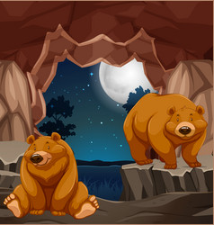 Two brown bears in cave vector