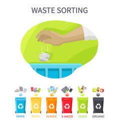 Waste sorting poster and bins vector
