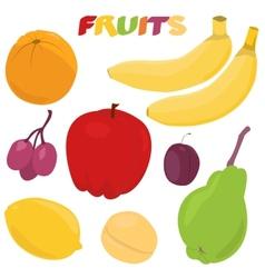 Cartoon fruit set vector image