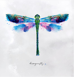 monotype vivid dragonfly vector image vector image