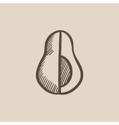 Avocado sketch icon vector