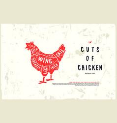 stock chicken cuts diagram vector image