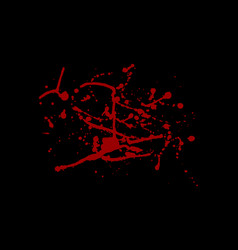 abstract blood red splatter isolated on black vector image