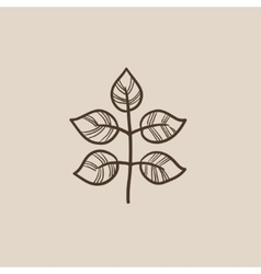 Branch with leaves sketch icon vector