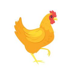 farm animal - chicken vector image