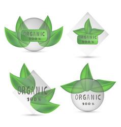 green label organic vector image